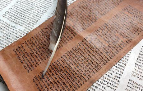 תפארת הקריאה בפרשת 'נח'