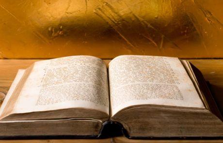 פרשת שמיני – מאת: הרב מנחם בר' רחמים צדוק