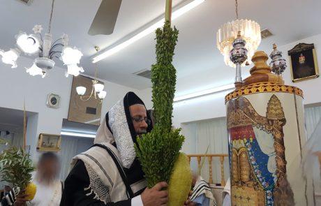 """מוסף הושענה רבה – הרב יהודה גמליאל שליט""""א"""