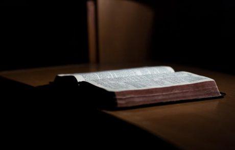 תפארת הקריאה בפרשת מטות