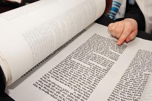 תפארת הקריאה בפרשת וילך