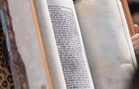 תפארת הקריאה בפרשת נשא