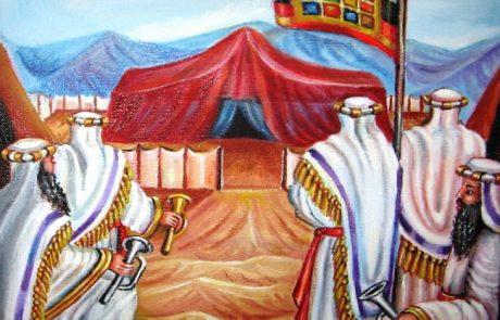 """ייחוס ק""""ק תימן לשבט יהודה"""