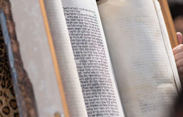 """תפארת הקריאה בפרשת חיי-שרה – הרב ד""""ר ב""""צ בר-עמ""""י"""